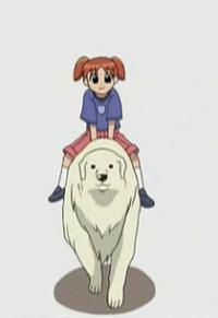 Azumanga Daiou The Animation Cover
